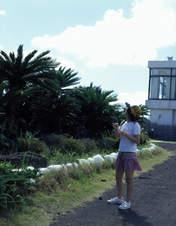 Niigaki Risa,   Photobook,