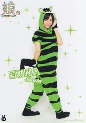 Ikuta Erina,