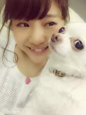 Anai Chihiro,   blog,