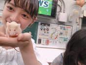 Kamikokuryou Moe,