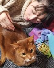 blog,   Kusumi Koharu,