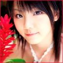 Peppermint_Shia's Photo