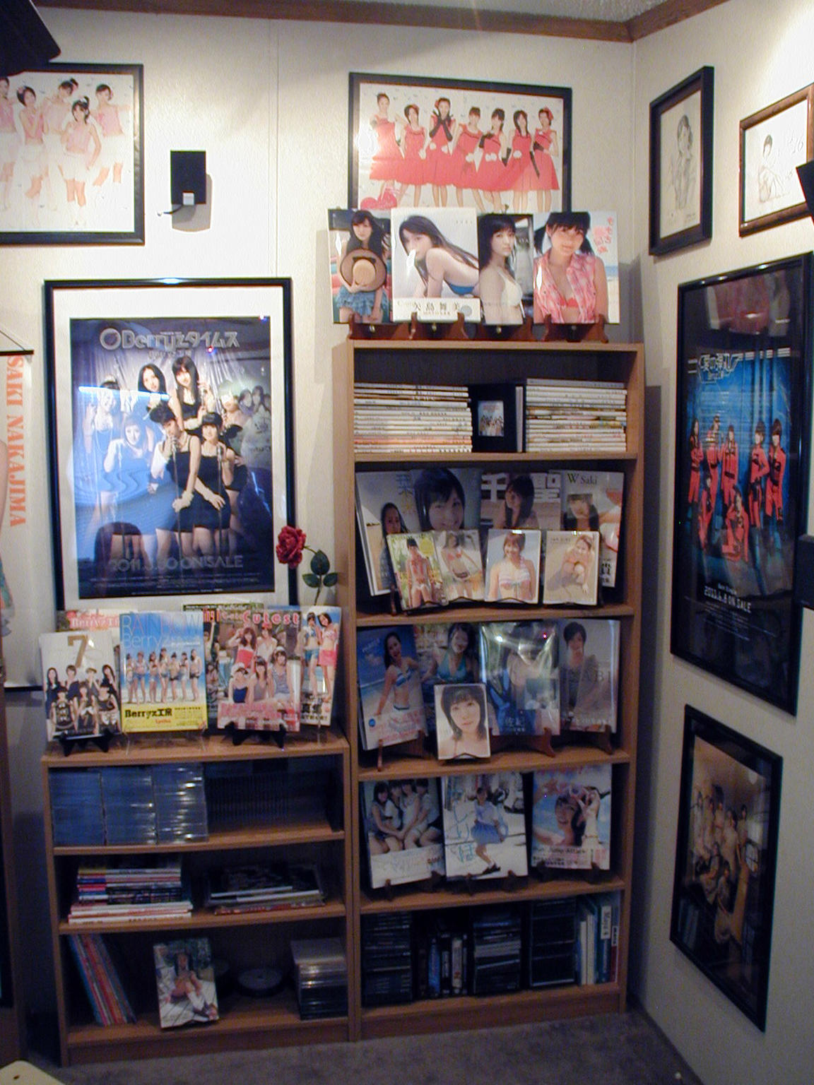 PB display bookcase