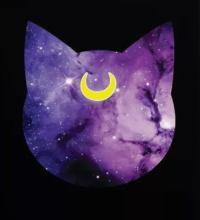 moon ☾dust's Photo
